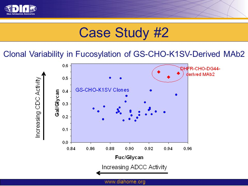 Clonal Variability in Fucosylation of GS-CHO-K1SV-Derived MAb2