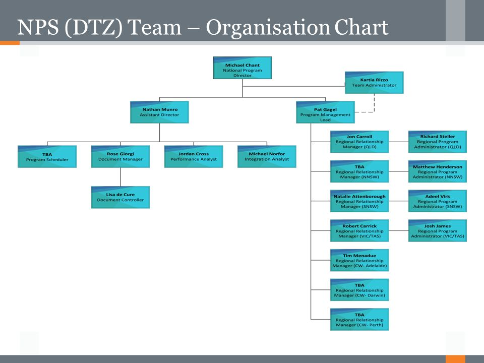 NPS (DTZ) Team – Organisation Chart