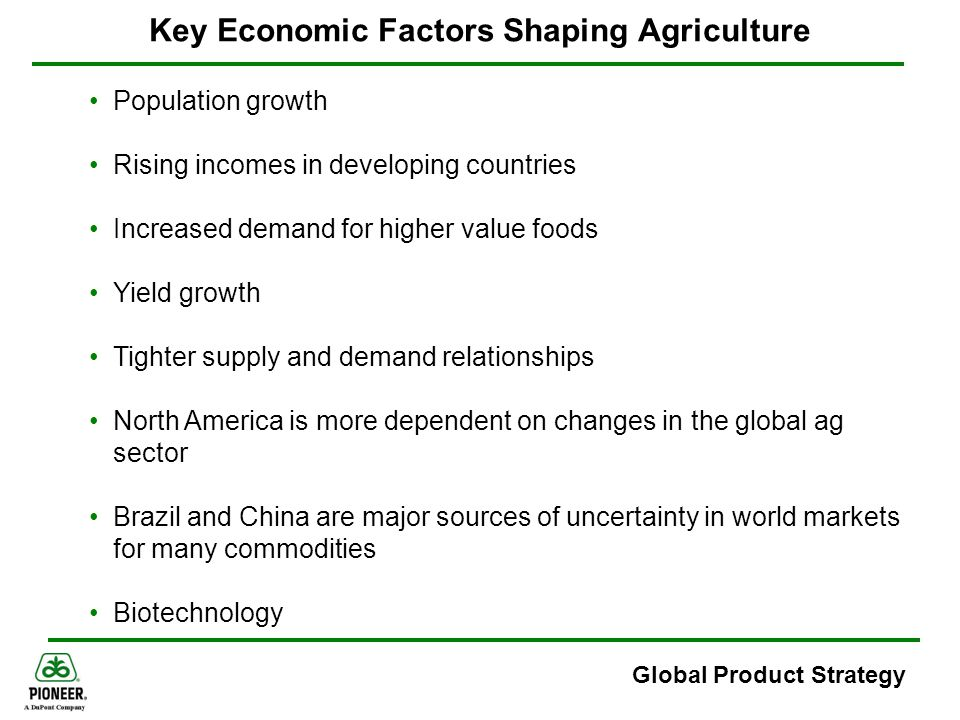 Key Economic Factors Shaping Agriculture