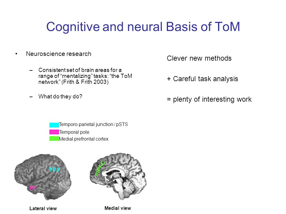 Cognitive and neural Basis of ToM