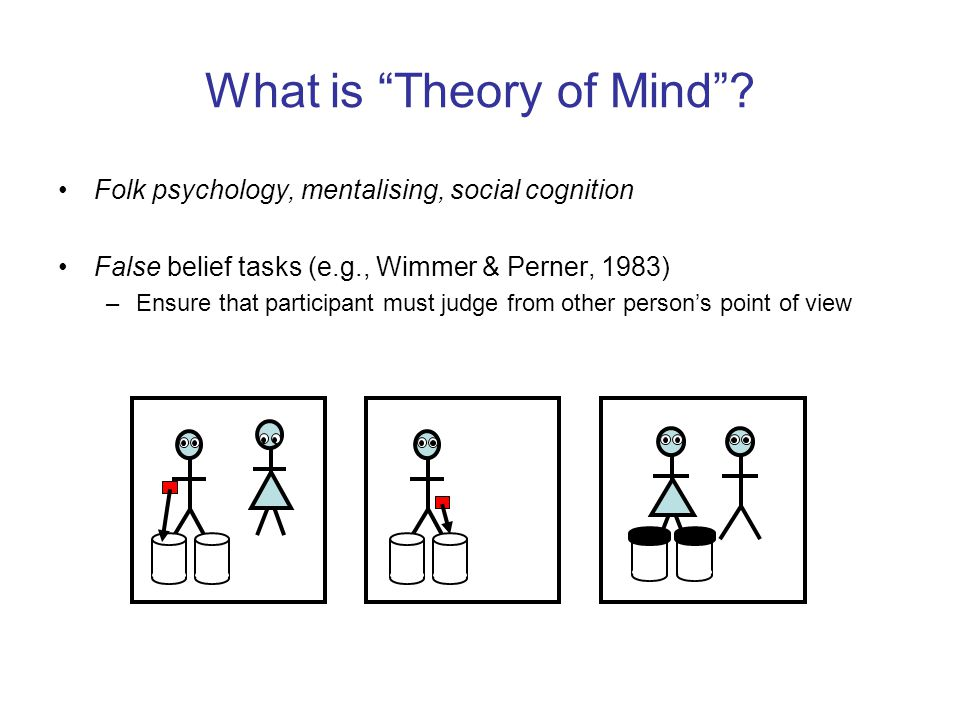 What is Theory of Mind