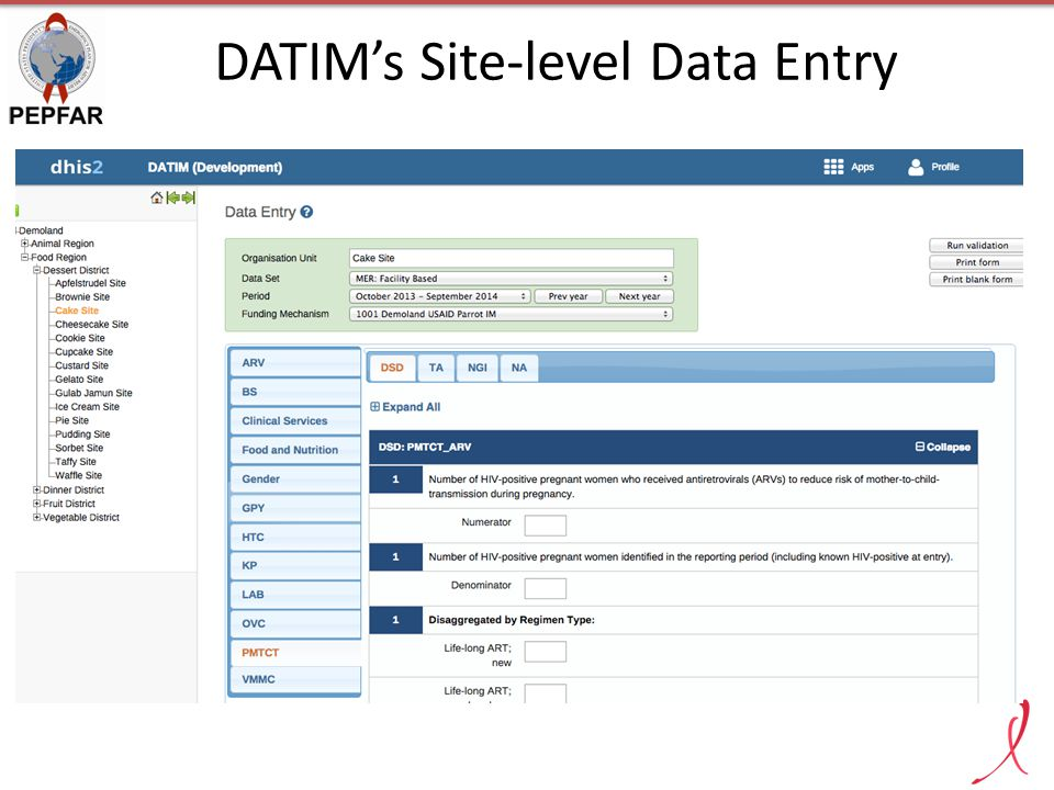 DATIM's Site-level Data Entry
