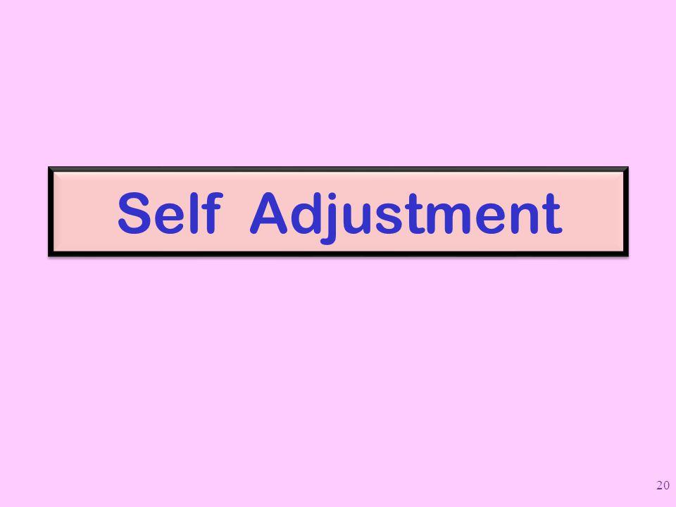 Self Adjustment