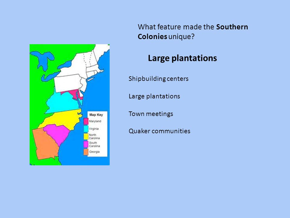 Large plantations What feature made the Southern Colonies unique
