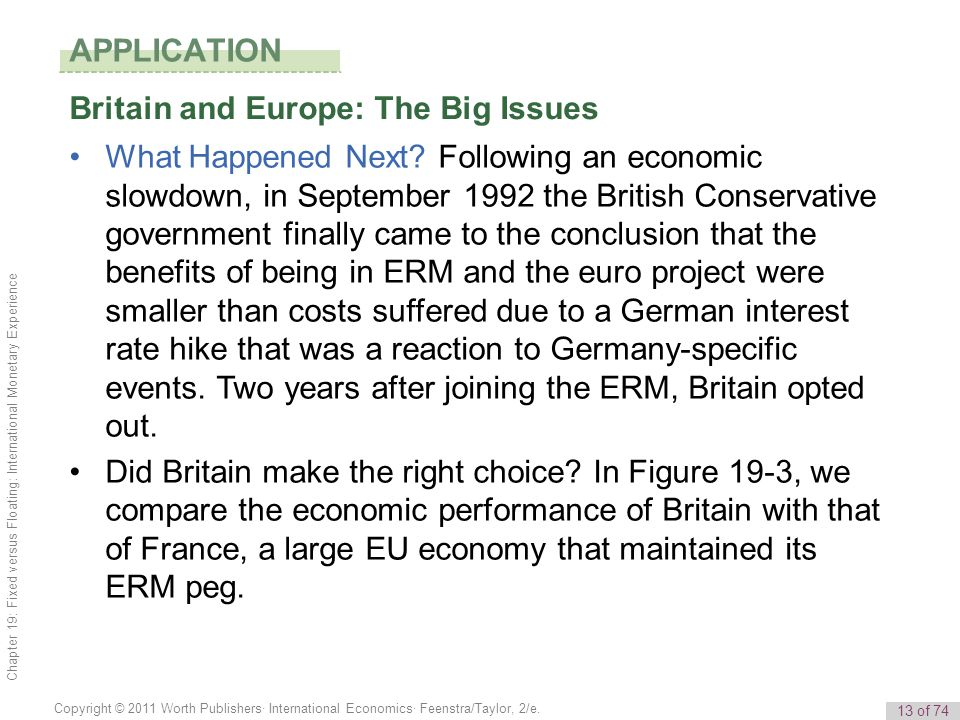 APPLICATION Britain and Europe: The Big Issues.