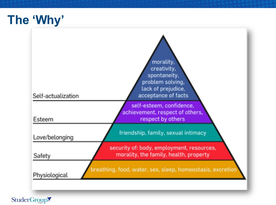 The 'Why'