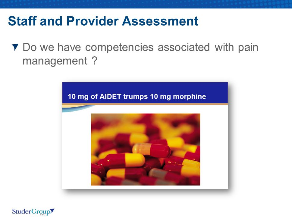 Staff and Provider Assessment