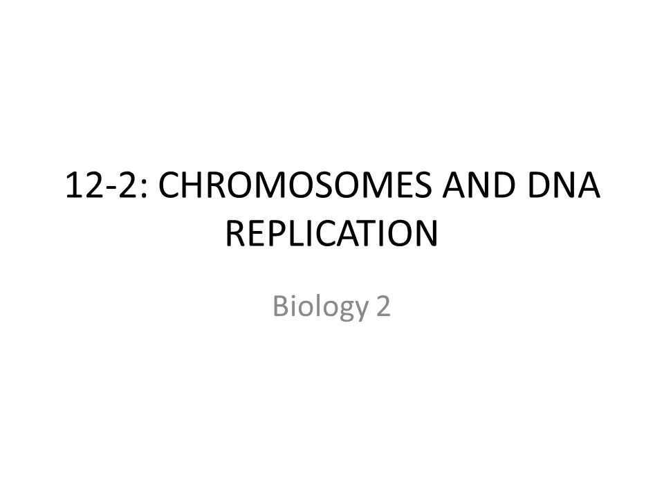 12-2: CHROMOSOMES AND DNA REPLICATION