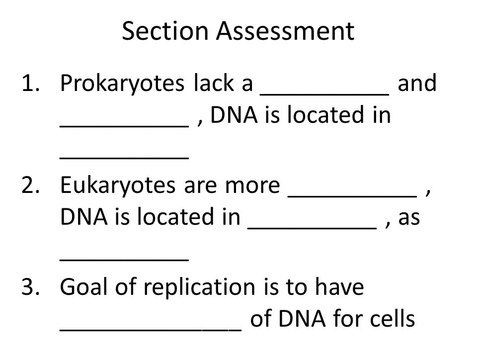 Section Assessment Prokaryotes lack a __________ and __________ , DNA is located in __________.