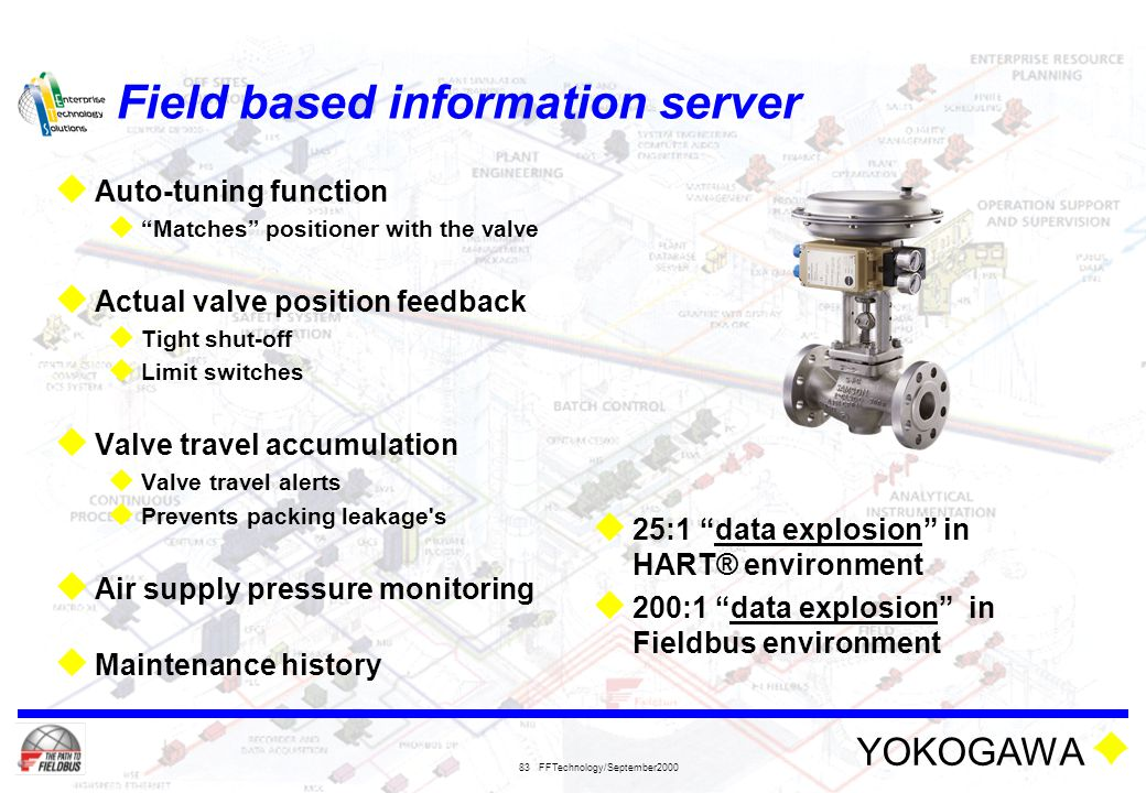 Field based information server