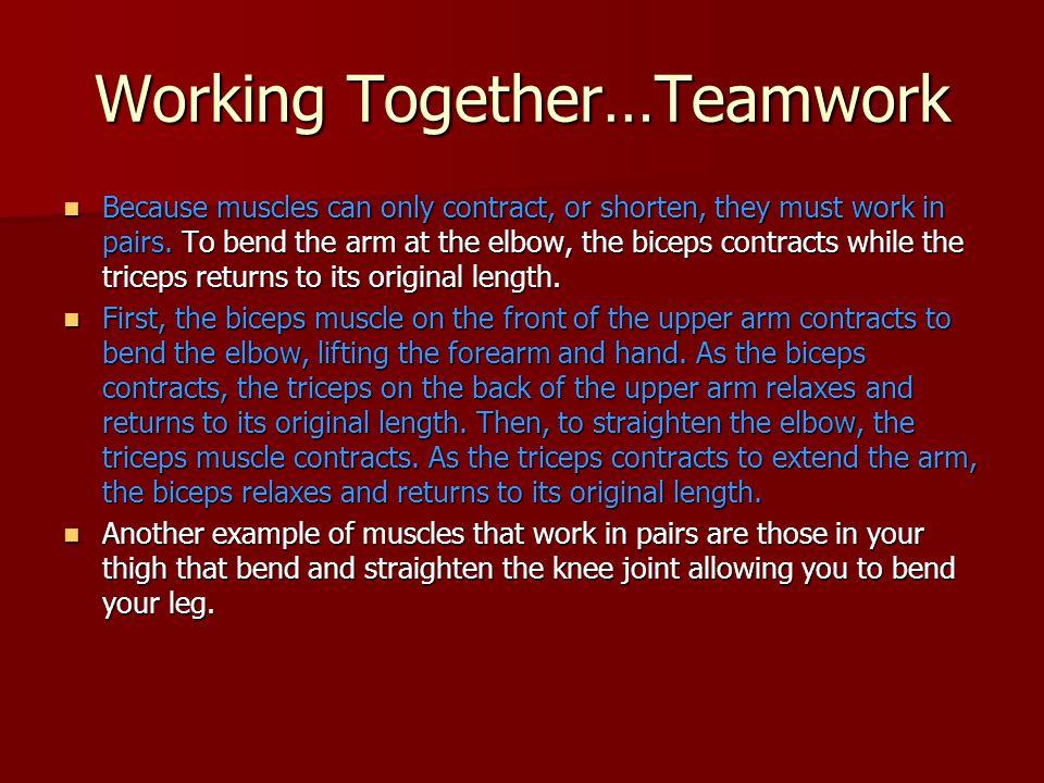 Working Together…Teamwork
