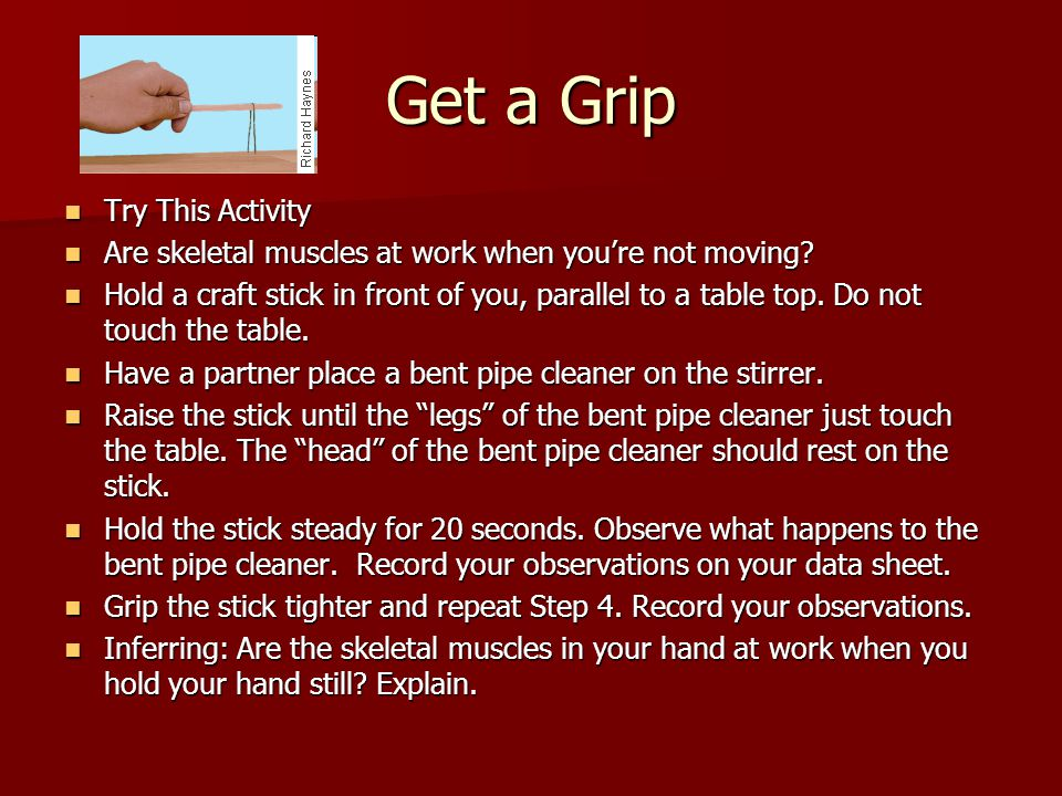 Get a Grip Try This Activity