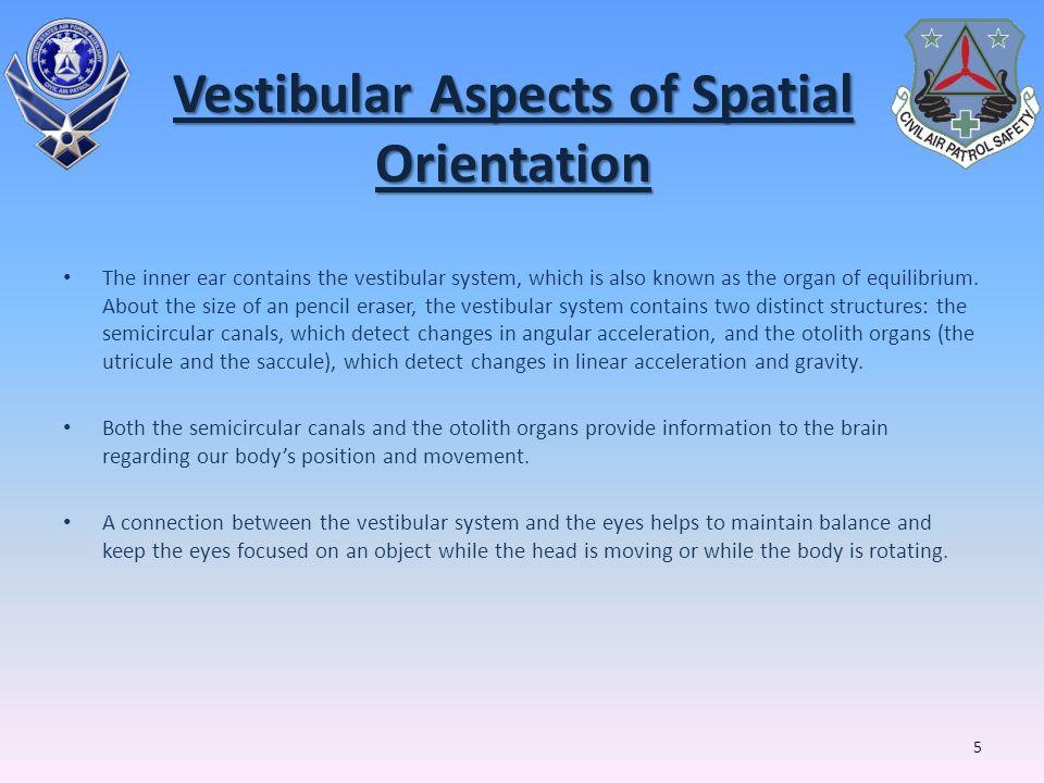 Vestibular Aspects of Spatial Orientation