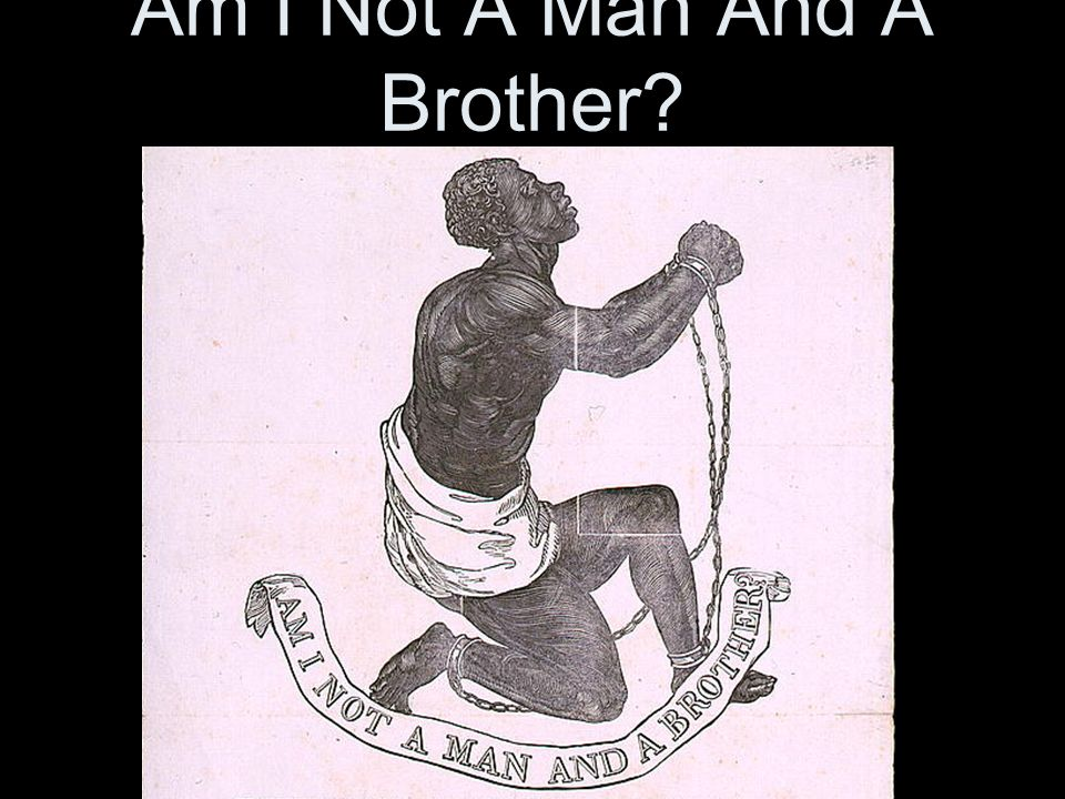 Am I Not A Man And A Brother