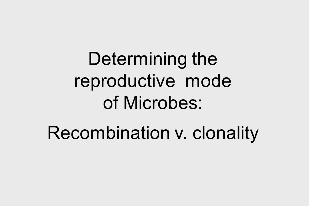 Determining the reproductive mode of Microbes:
