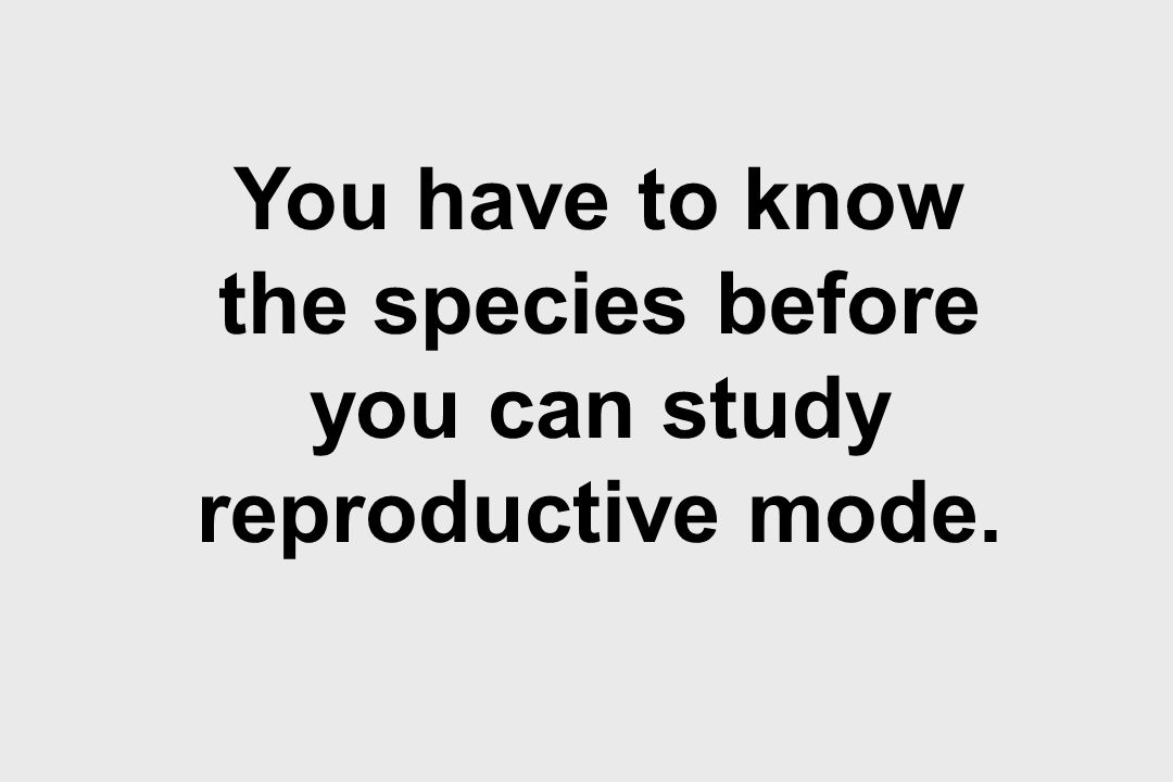 You have to know the species before you can study reproductive mode.