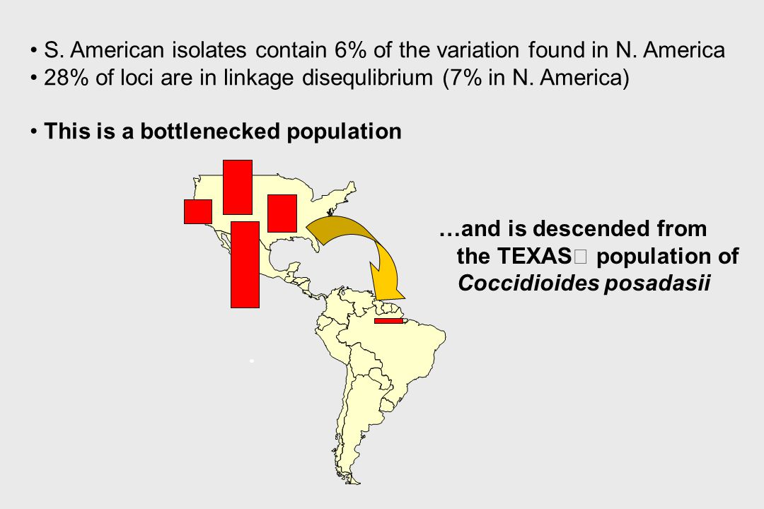 S. American isolates contain 6% of the variation found in N. America