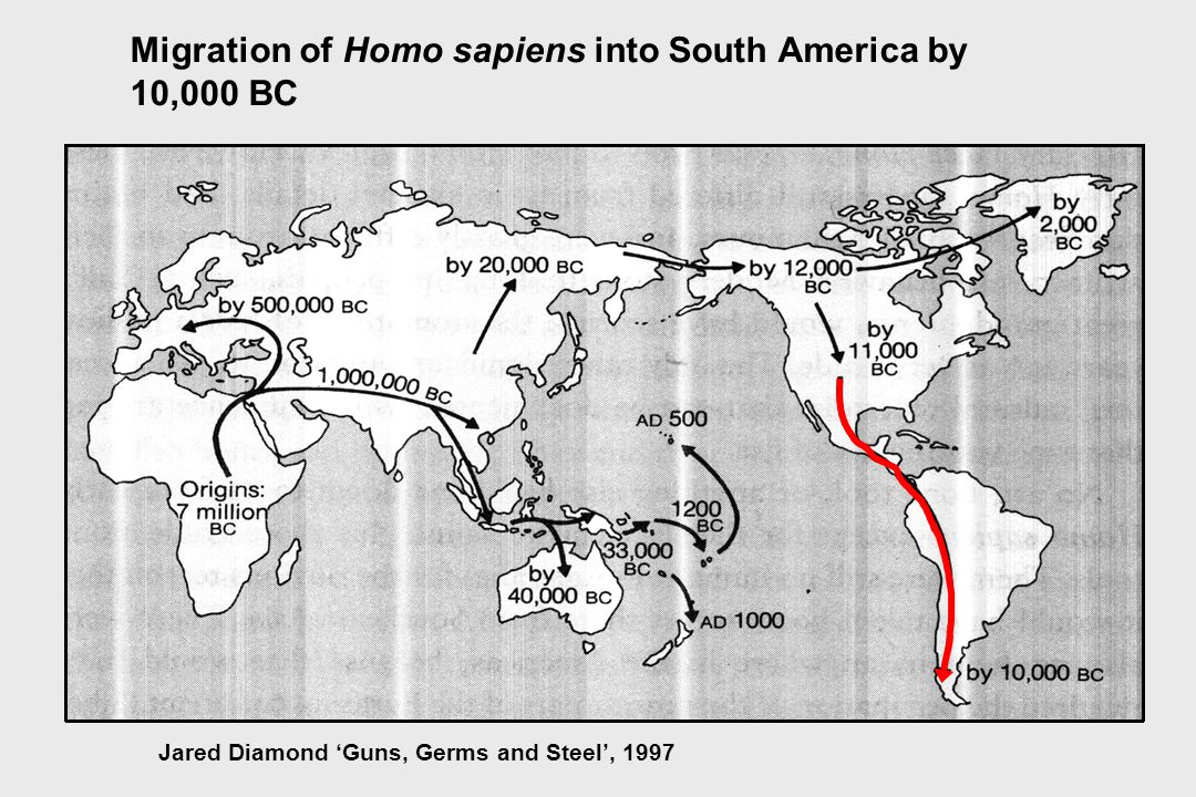 Migration of Homo sapiens into South America by 10,000 BC