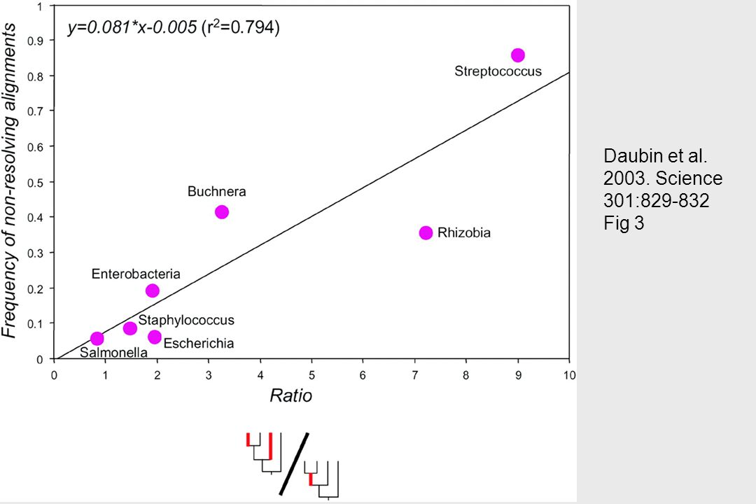 Daubin et al. 2003. Science 301:829-832 Fig 3