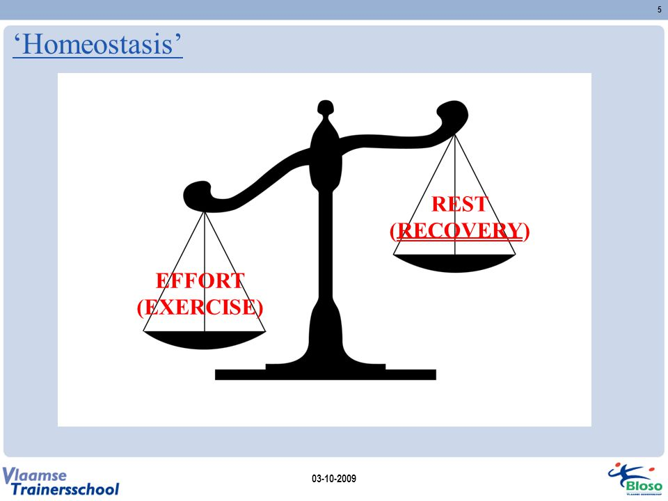 'Homeostasis' EFFORT (EXERCISE) REST (RECOVERY) 03-10-2009