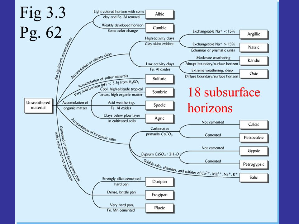 Fig 3.3 Pg. 62 18 subsurface horizons