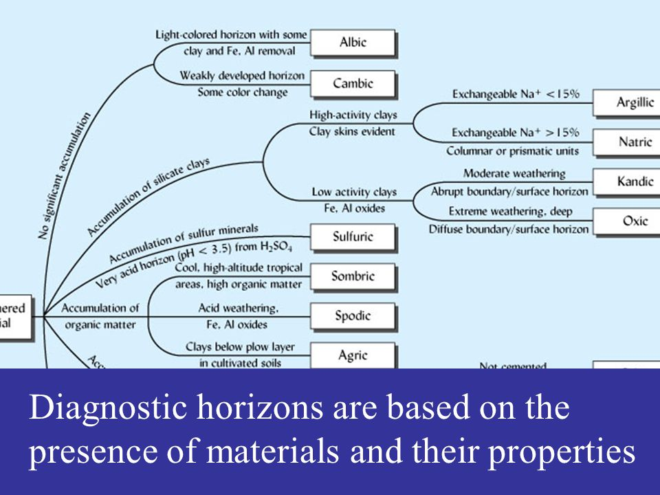 Diagnostic horizons are based on the presence of materials and their properties