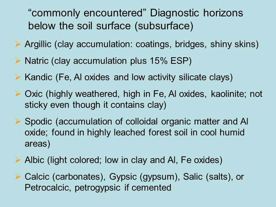 commonly encountered Diagnostic horizons below the soil surface (subsurface)