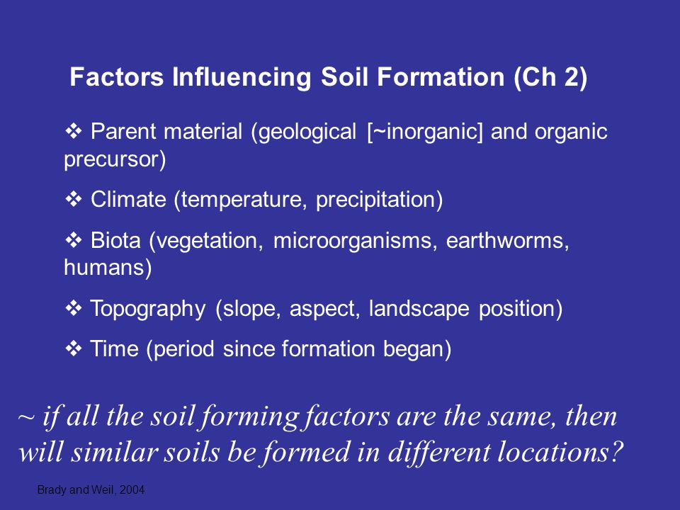 Soil formation begins with weathering of bedrock ppt for Soil forming factors