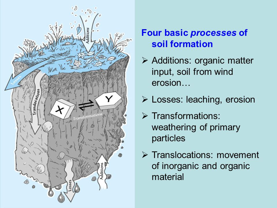 Soil formation begins with weathering of bedrock ppt for Soil formation