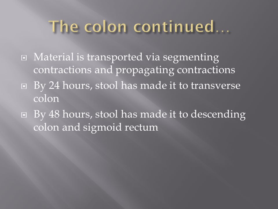 The colon continued… Material is transported via segmenting contractions and propagating contractions.