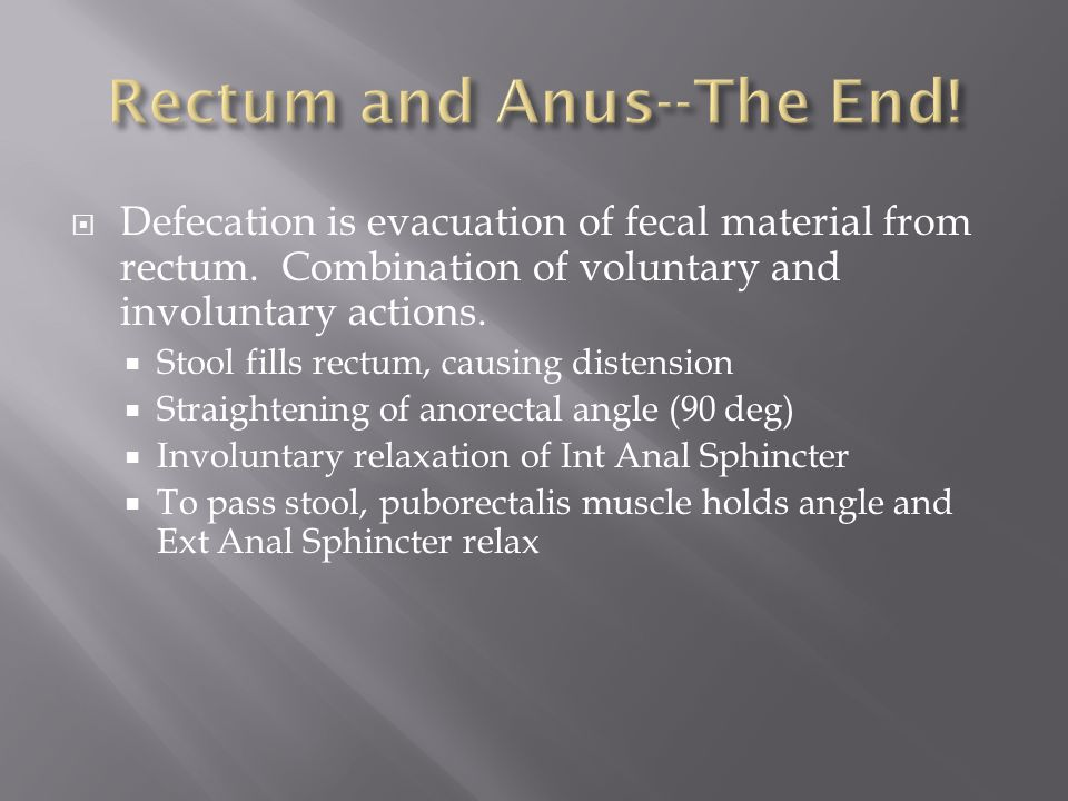 Rectum and Anus--The End!