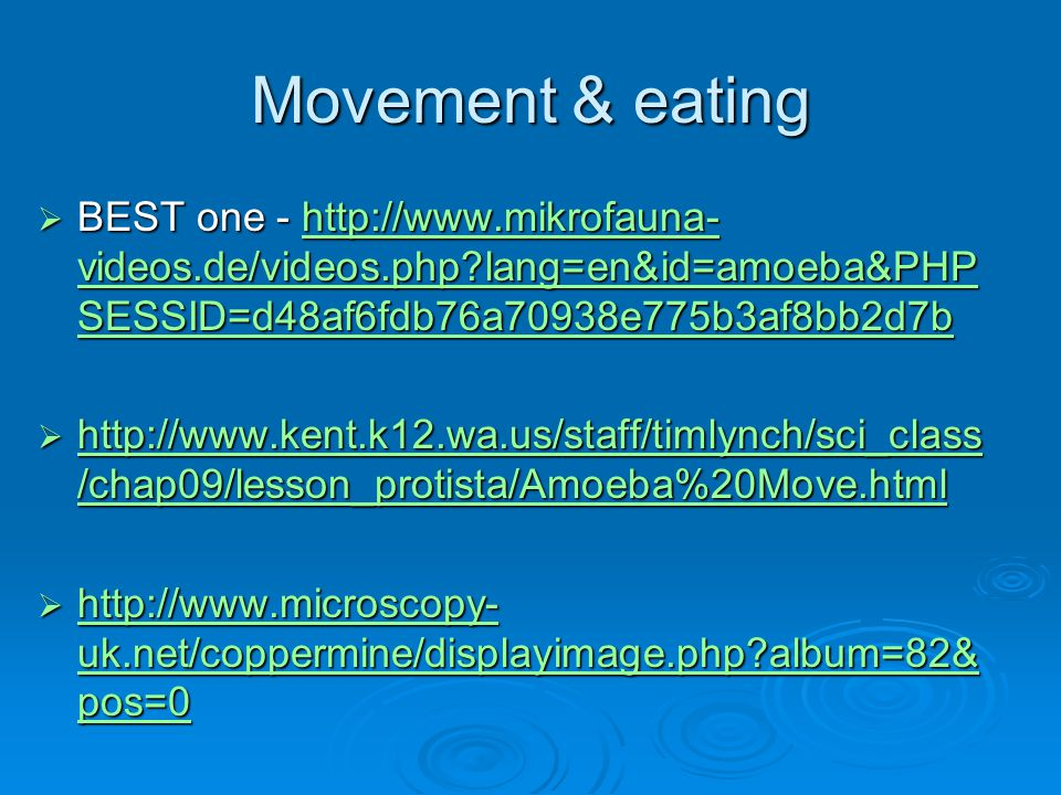 Movement & eating BEST one - http://www.mikrofauna-videos.de/videos.php lang=en&id=amoeba&PHPSESSID=d48af6fdb76a70938e775b3af8bb2d7b.