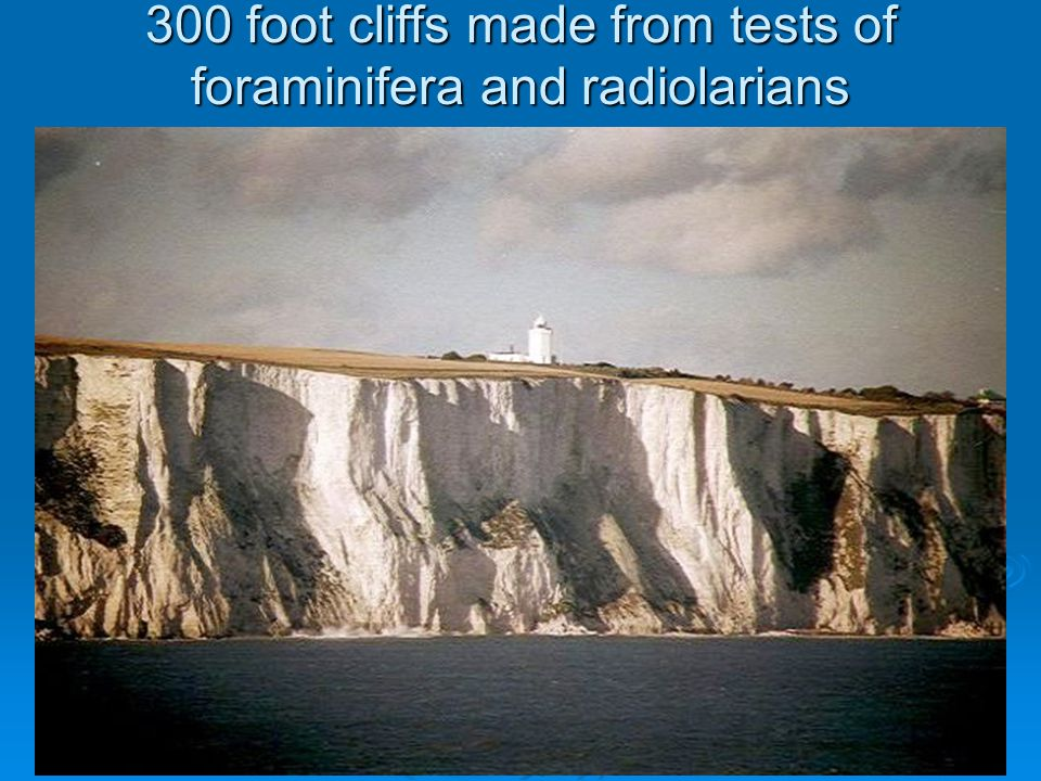 300 foot cliffs made from tests of foraminifera and radiolarians
