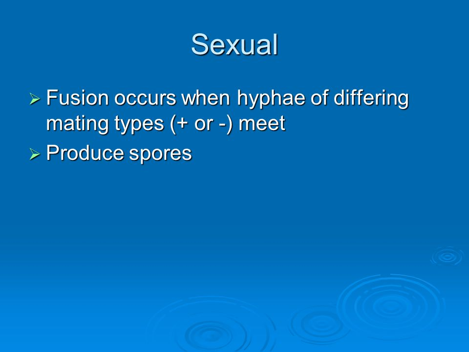 Sexual Fusion occurs when hyphae of differing mating types (+ or -) meet Produce spores