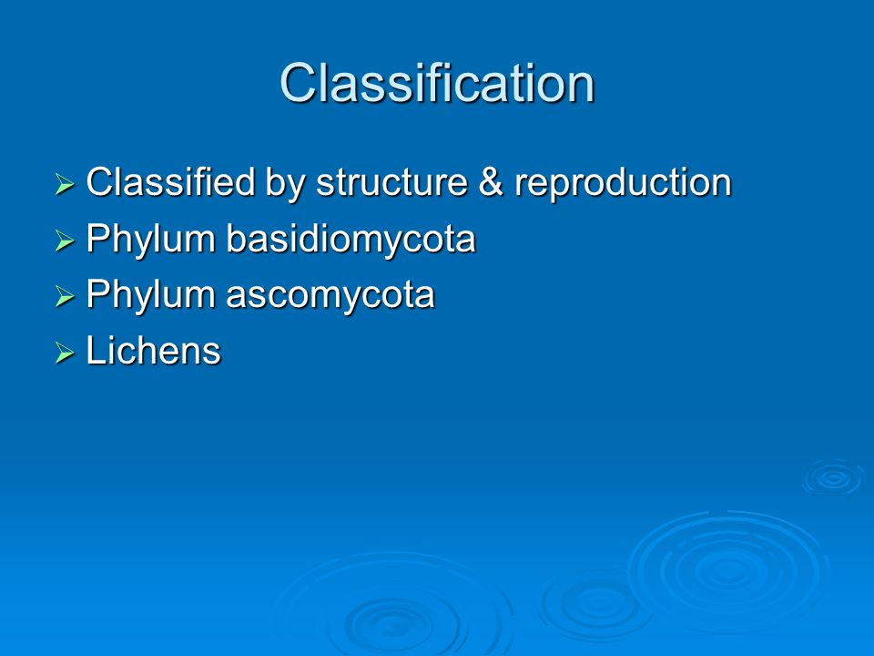 Classification Classified by structure & reproduction