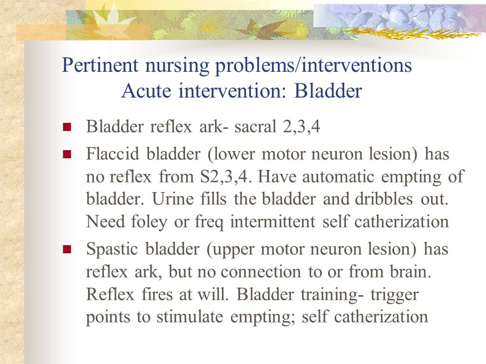 Pertinent nursing problems/interventions Acute intervention: Bladder