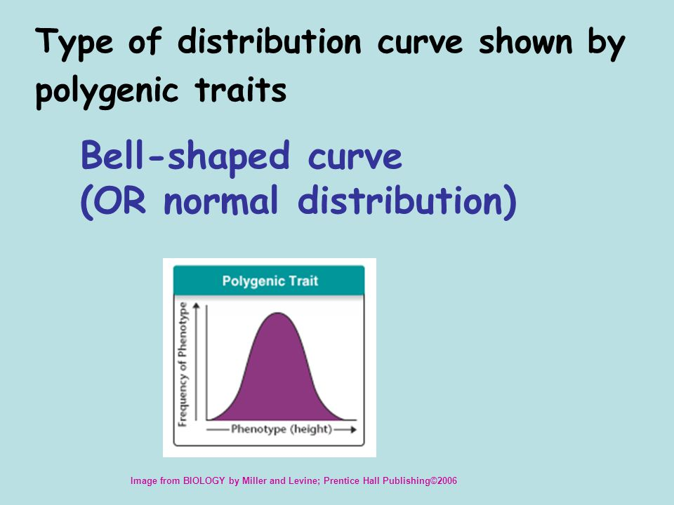 Bell-shaped curve (OR normal distribution)
