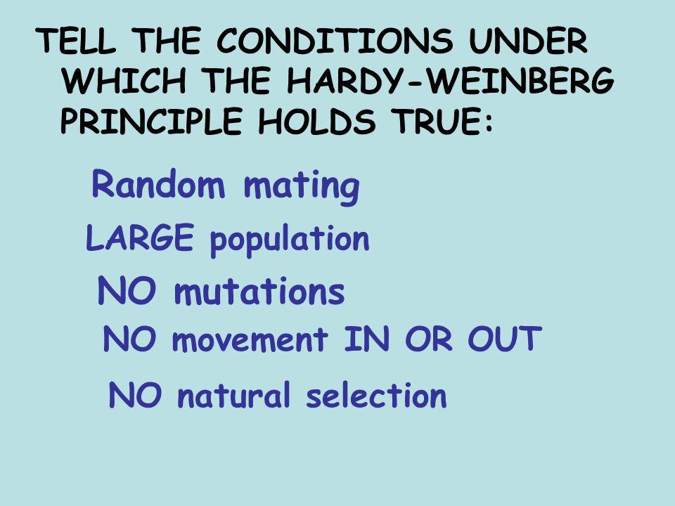 Random mating NO mutations