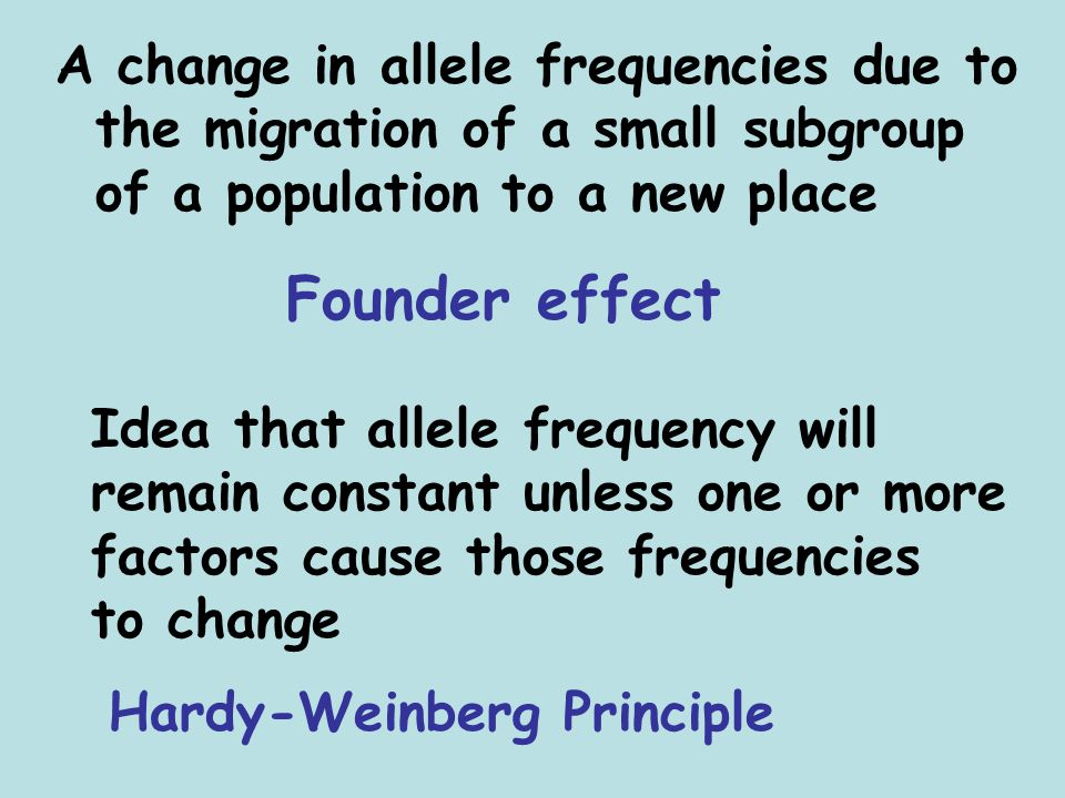 A change in allele frequencies due to the migration of a small subgroup of a population to a new place