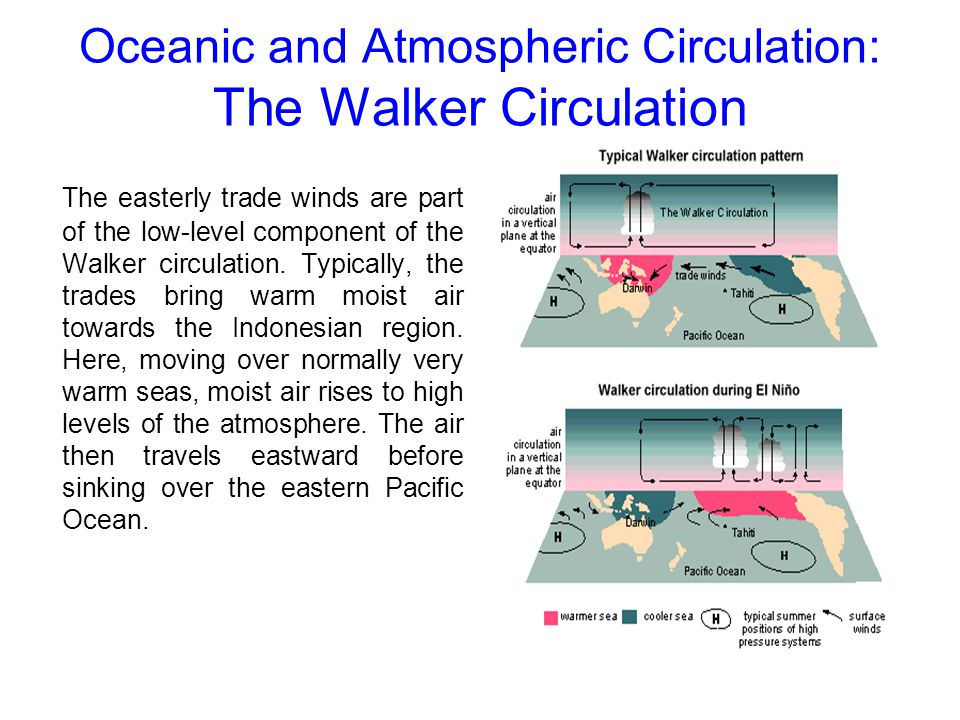 Oceanic and Atmospheric Circulation: The Walker Circulation