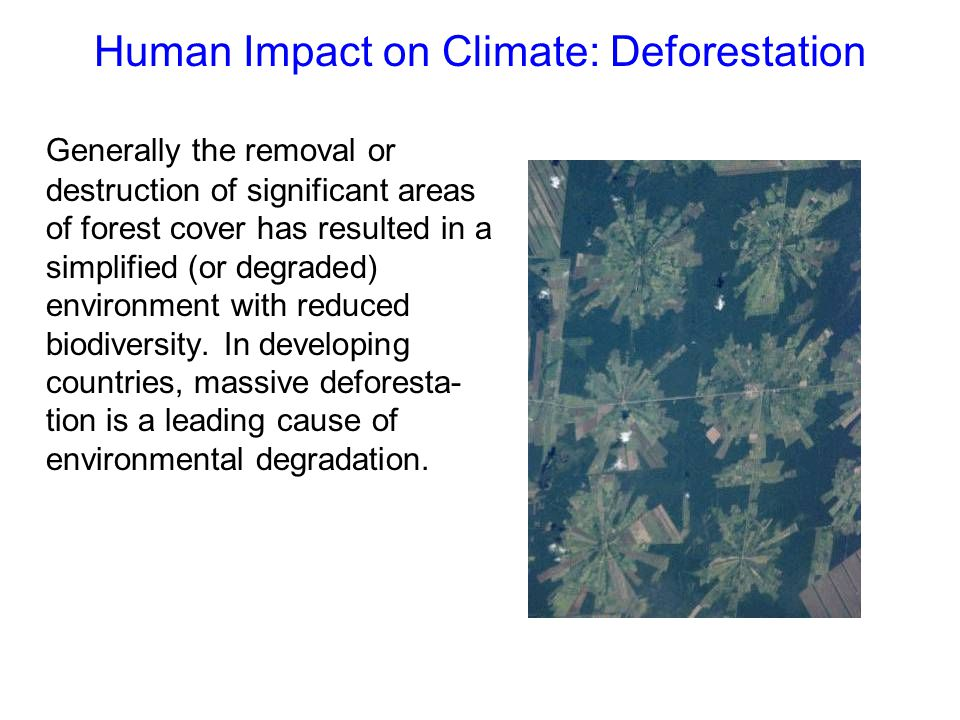 Human Impact on Climate: Deforestation