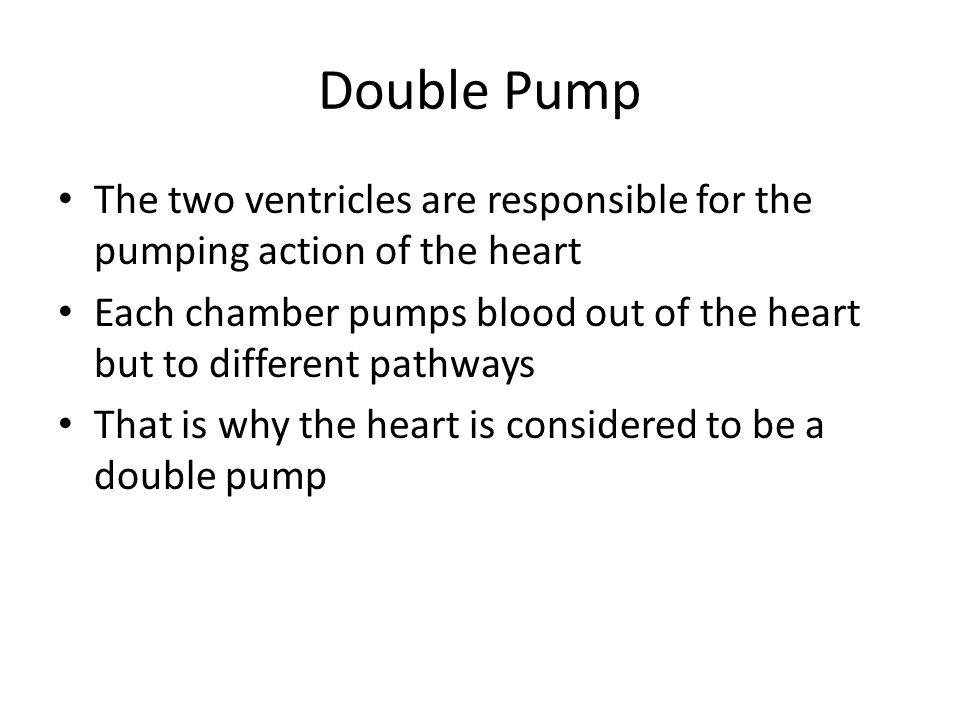 Double Pump The two ventricles are responsible for the pumping action of the heart.