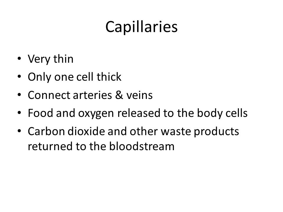 Capillaries Very thin Only one cell thick Connect arteries & veins