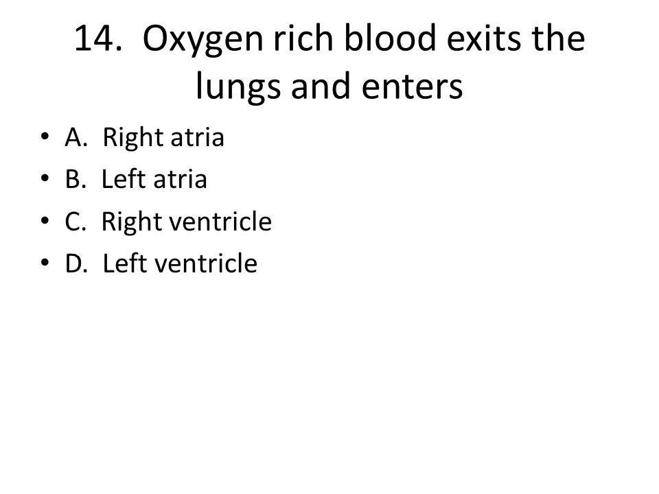 14. Oxygen rich blood exits the lungs and enters