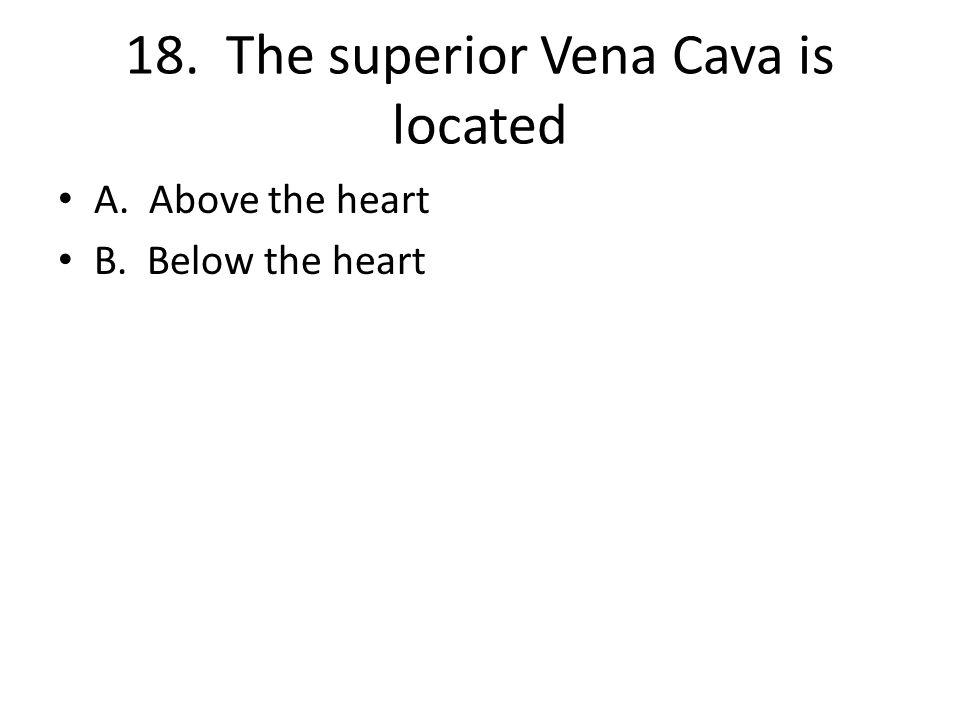 18. The superior Vena Cava is located