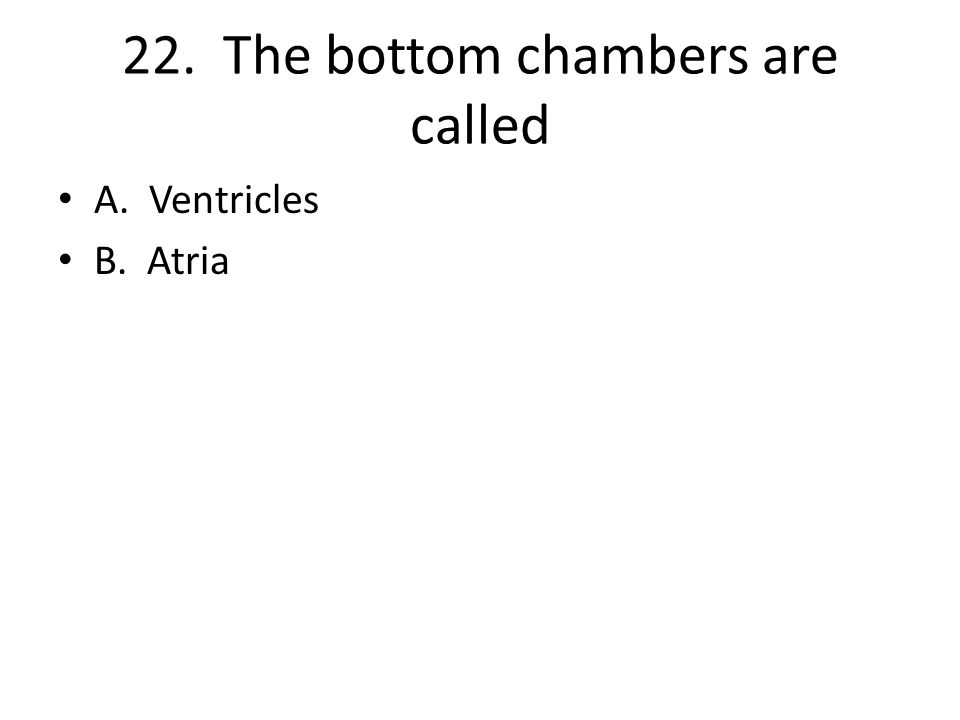 22. The bottom chambers are called