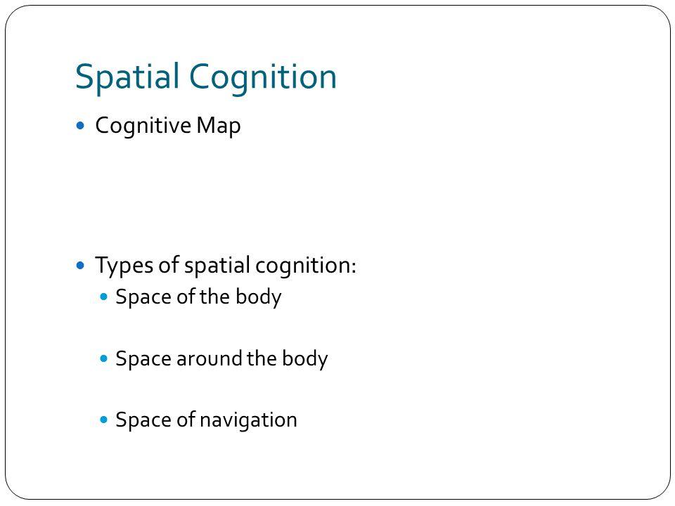 Spatial Cognition Cognitive Map Types of spatial cognition: