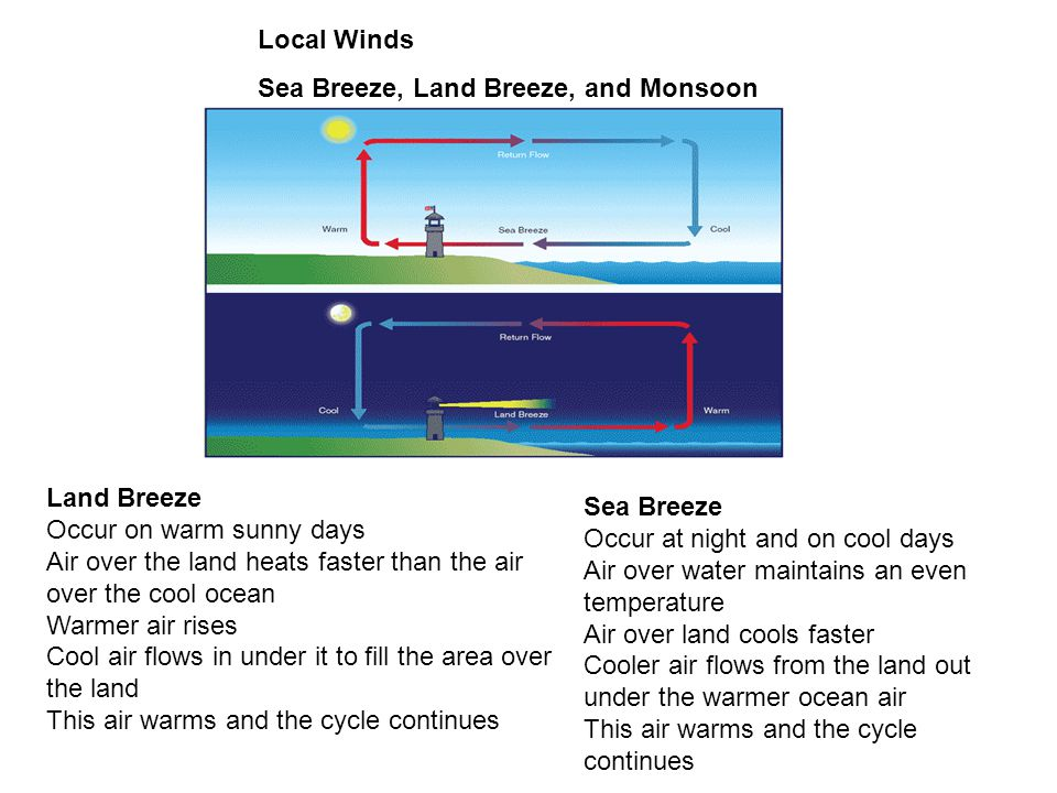 Local Winds Sea Breeze, Land Breeze, and Monsoon. Land Breeze. Occur on warm sunny days.