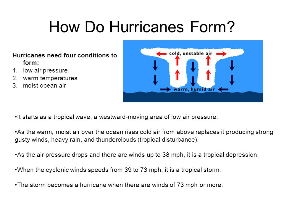Weather Compiled by Rocio Munoz - ppt video online download