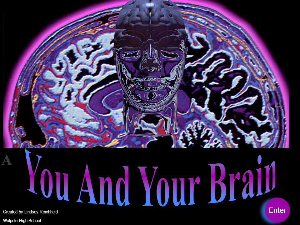 You And Your Brain Enter Created by Lindsey Reichheld
